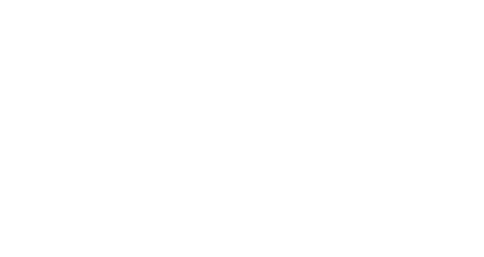 Dutch Assets Group