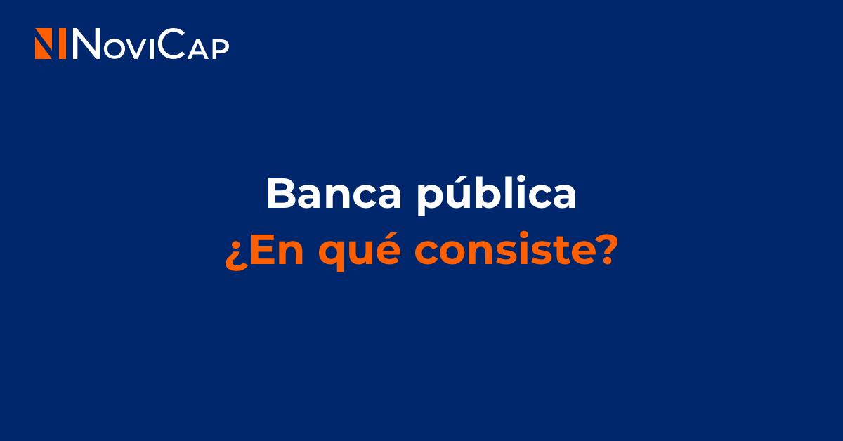 Banca pública, ¿En qué consiste?
